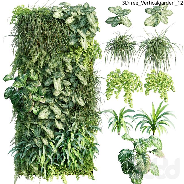 Verticalgarden - Green wall 12