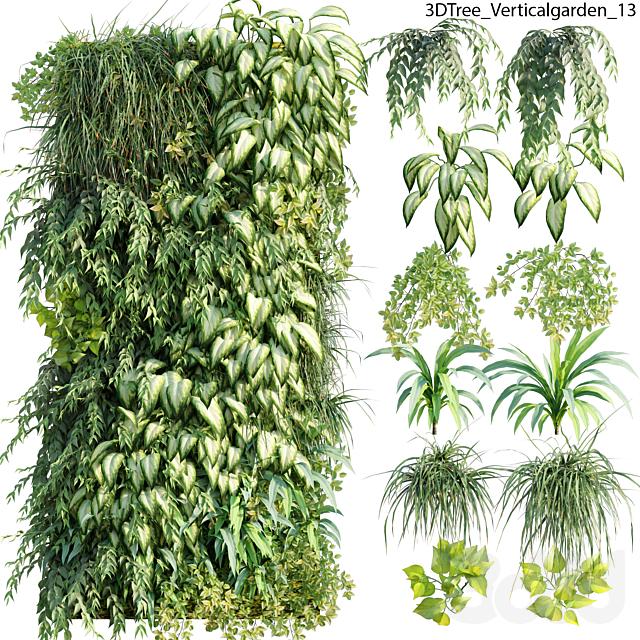 Verticalgarden - Green wall 13