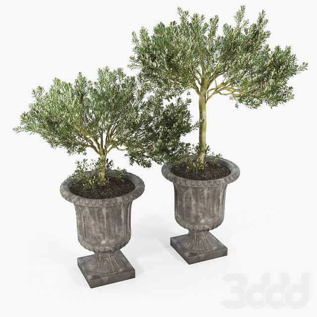 Crawfordsland Metal Pot Planter 01