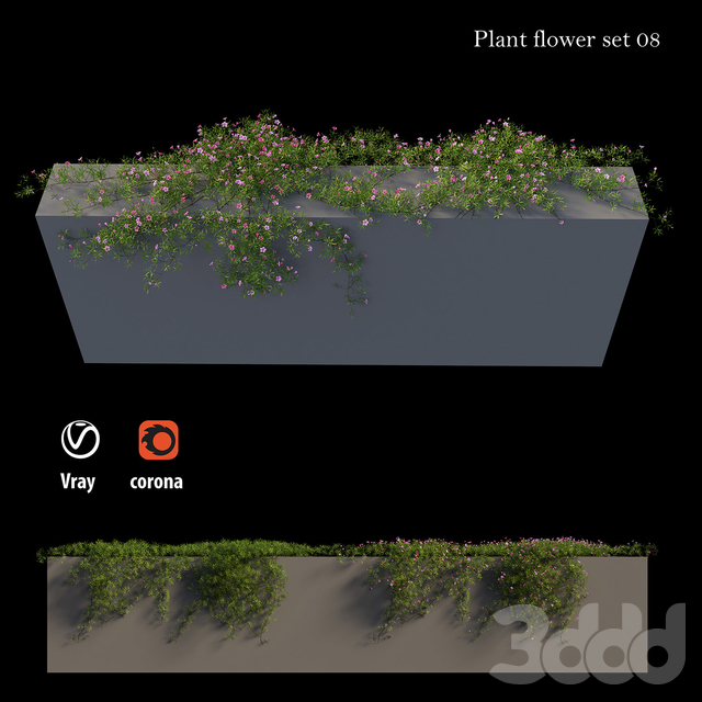 Plant Flower set 08