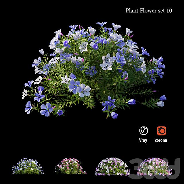 Plant Flower set 10