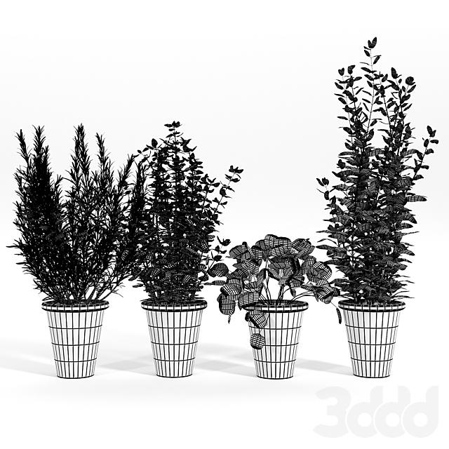 Bondurant Large Heavily Distressed Clay Pot Planter 01