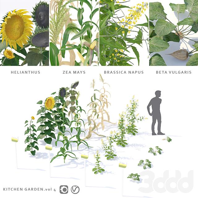 Огород   Kitchen garden.vol 4