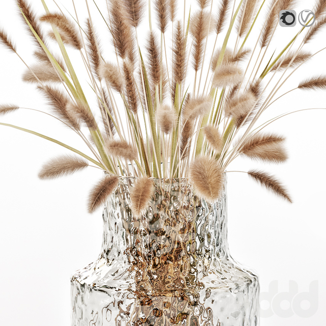 Dry flowers in glass vase 2